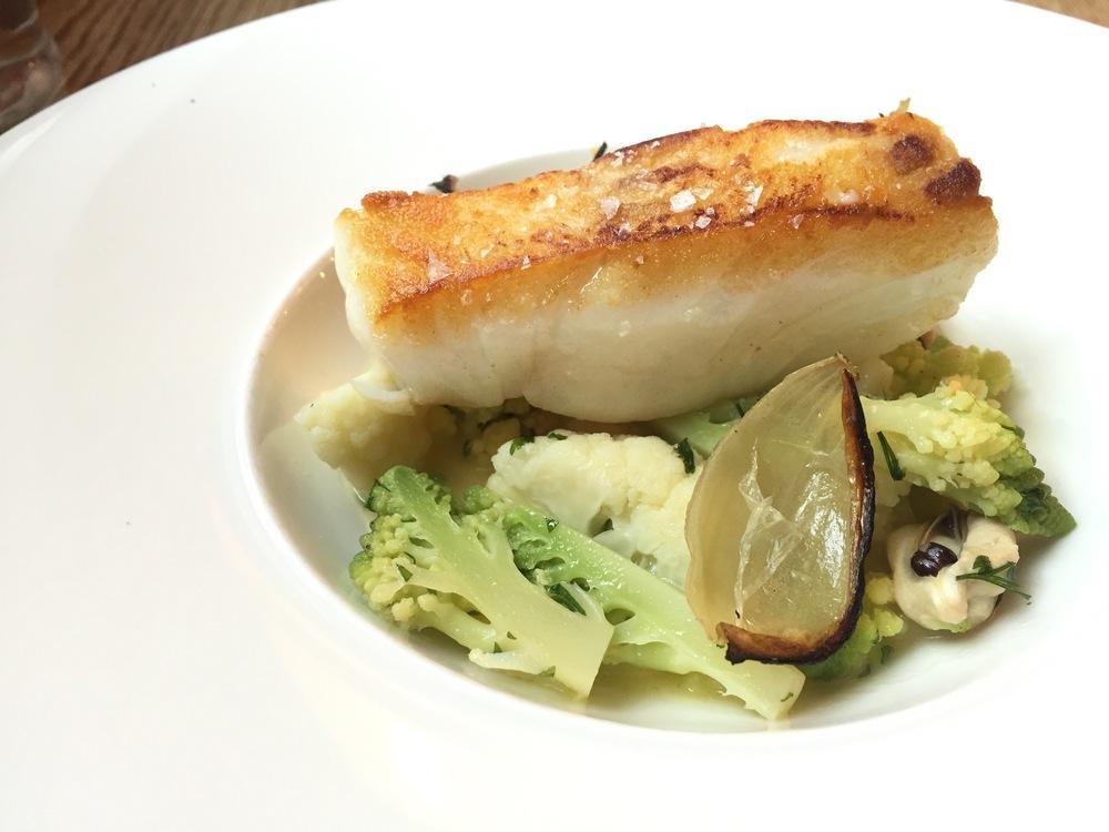 Main: Cod fish