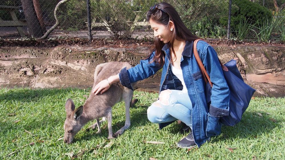 Kangarooooo