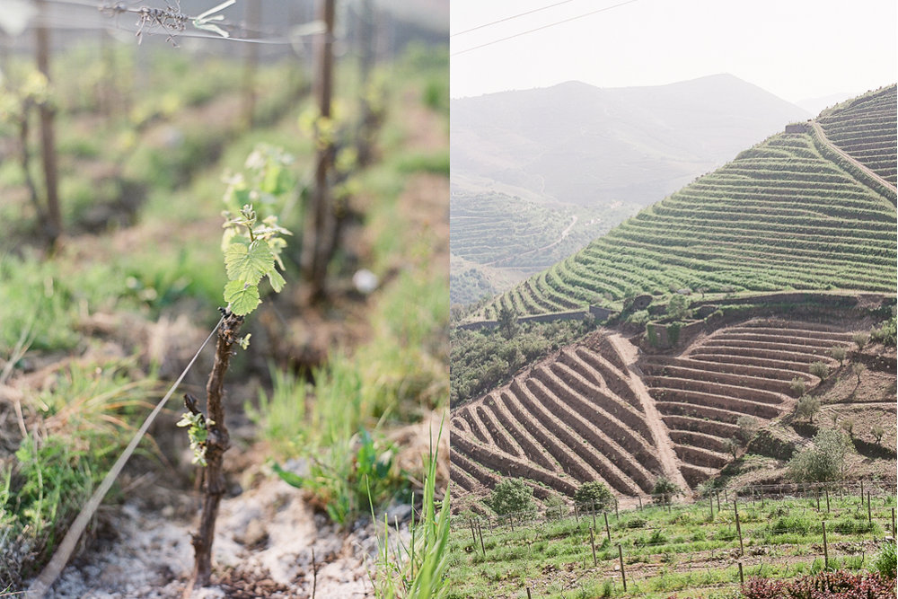 Wanderlust-Bees-Douro-Valley-Trip-2.jpg