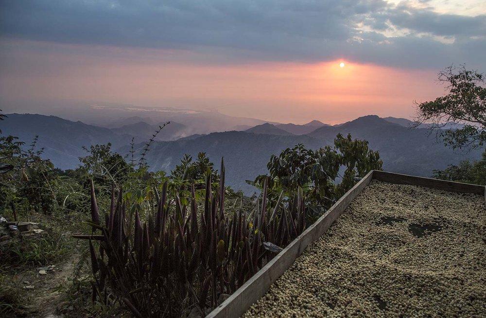 Fototrails_Photo_Tour_Minca_Colombia_coffee.jpg