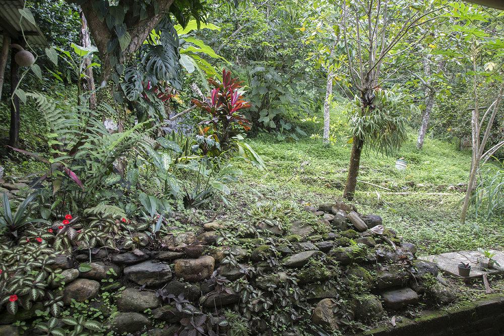 Garden-back.jpg