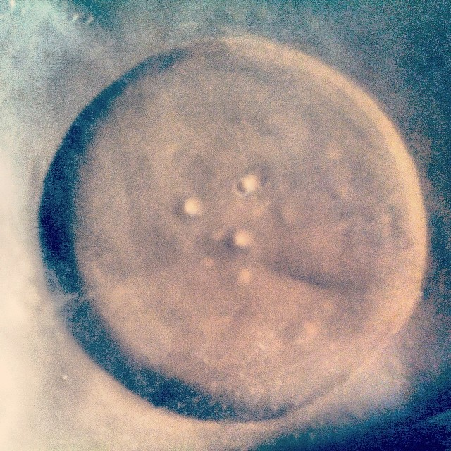 Even the condensation in my #studio has an element of #geometry to it! #sculpture