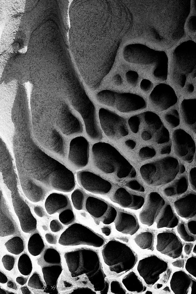 ezioblasetti :     coastal rock study #10
