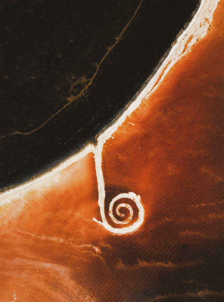 clavicola :       Aerial view of Spiral Jetty (1970), Great Salt Lake, Utah, August 2003. Mud, precipitated salt crystals, rocks and water. Coil: 1500 ft. long and 15 ft. wide. Photographed by David Maisel.