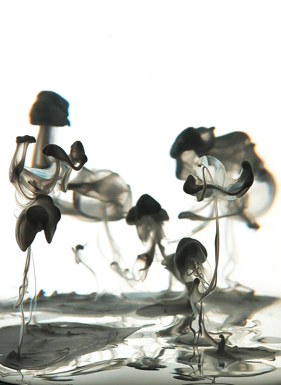 subcreation :     Liquid Smoke by   Ryann Cooley    (via  heyypuuki : lemon2jul : thresholdnote )