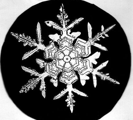 "Thanks to ""Snowflake Bentley"" (Wilson A Bentley), who lived in Vermont in the US at the turn of the 19th century, we know that snowflakes can take on many shapes. He was the first to photograph a single snowflake crystal, and in his lifetime he took over 5,000 photos of snowflakes, categorising them into 80 types, including needles, columns and a wide variety of hexagonal forms."