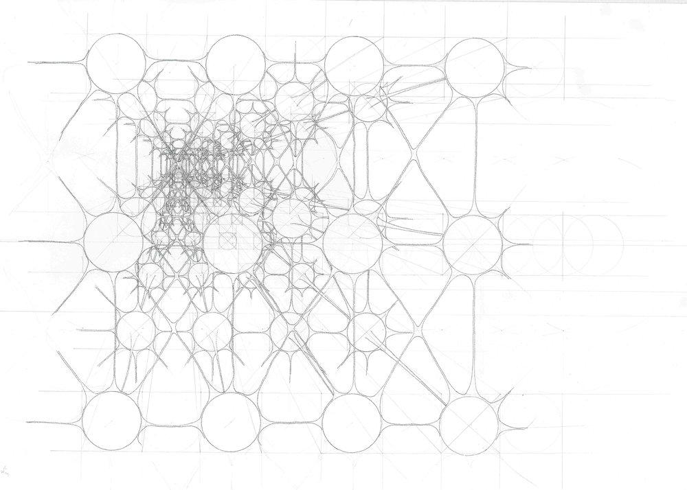 Cell Network.jpg