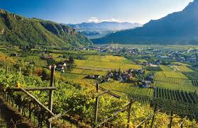 THE BEAUTIFUL VALLEY OF THE ALTO ADIGE