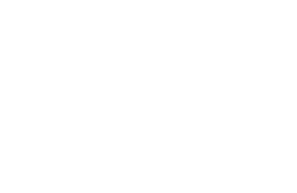 Bison Family Therapy Institute