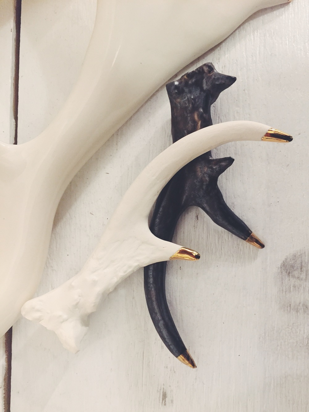 Honeycomb Studio White Tail Deer Antler