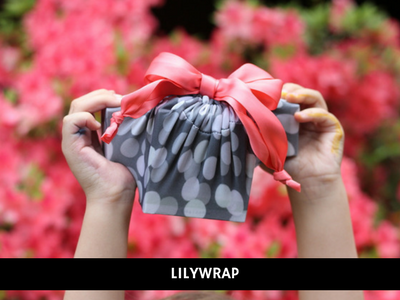 lilywrap / Deep South social