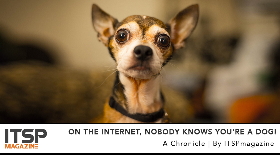 On the Internet, nobody knows you're a dog!.jpg