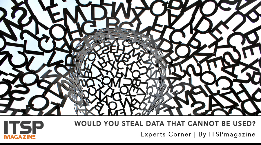Would You Steal Data that Cannot be Used.jpg