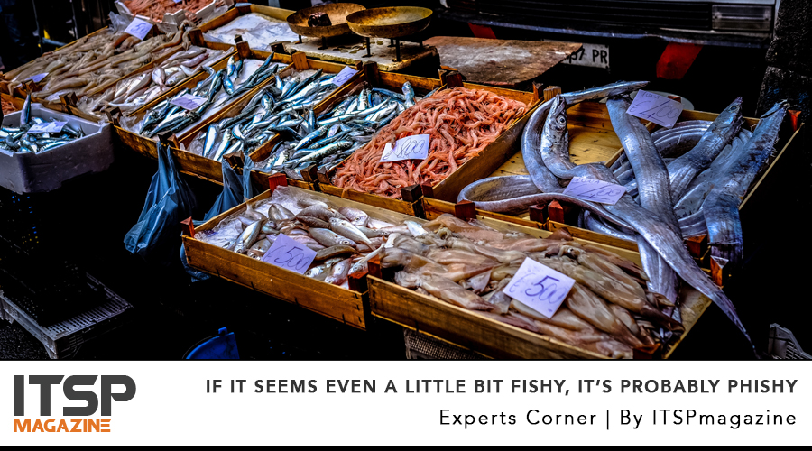 if it seems even a little bit fishy, it's probably phishy.jpg