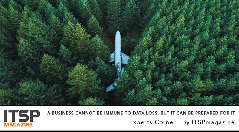 A Business Cannot Be Immune To Data Loss, But It Can Be Prepared For It.jpeg