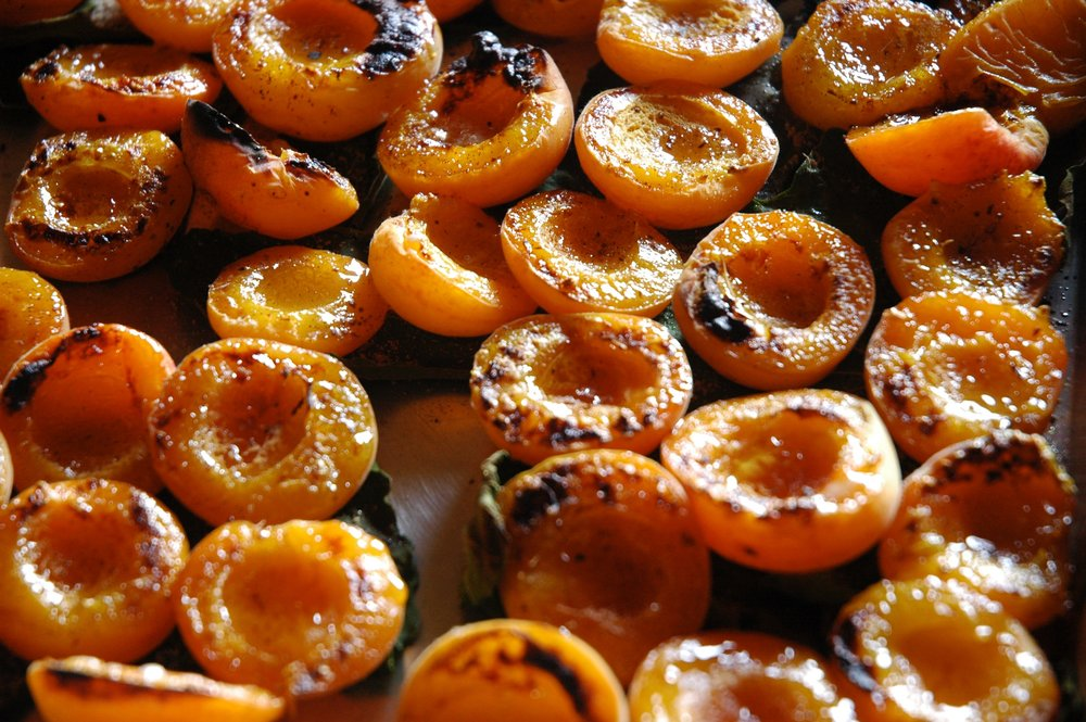 oven apricots