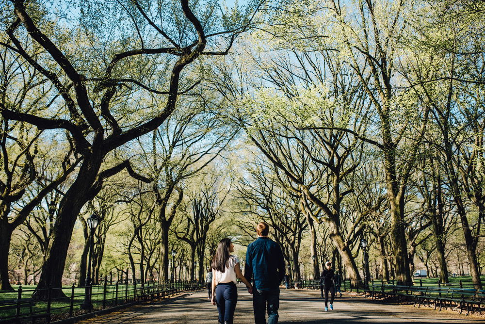 Main and Simple Photography_2016_Engagement_NY_T+S-282.jpg