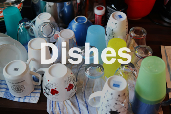 DISHES PIC.jpg