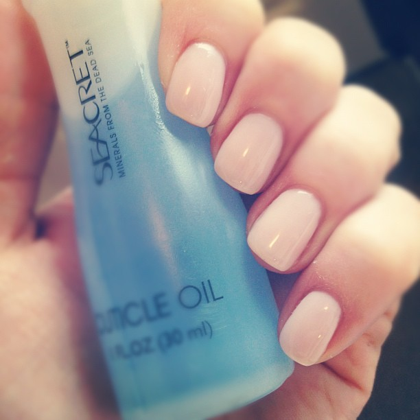 Shellac french manicure short nails