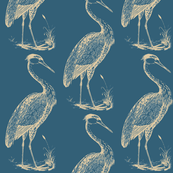 blue heron, cerulean