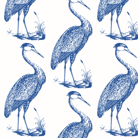 blue heron, white marine