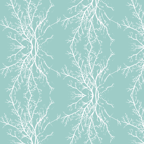 coral branchy, ocean