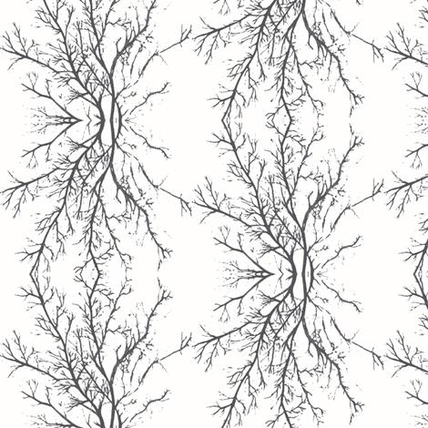 coral branchy, white noir