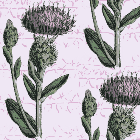 thistle espalier, lavendar