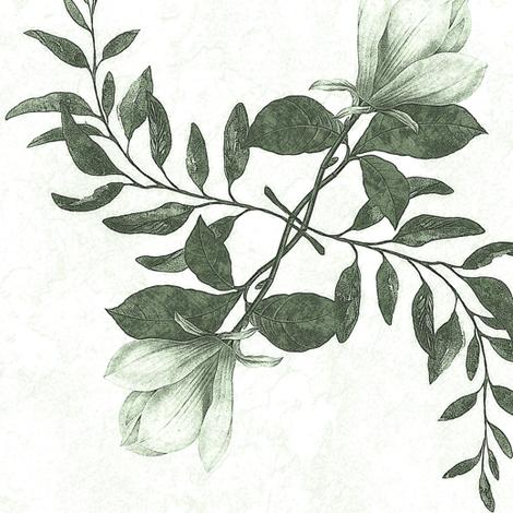 magnolia, sage