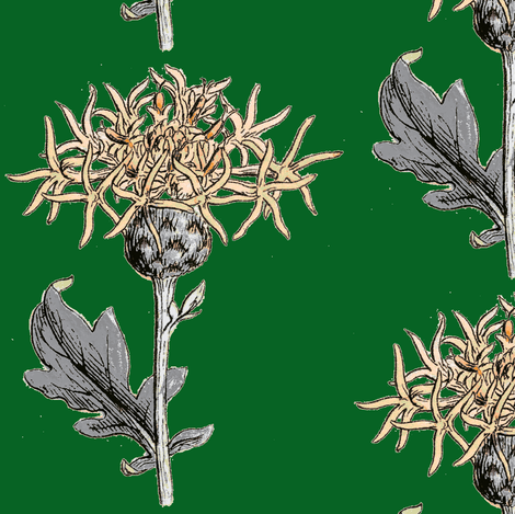 thistle sprig, new emerald