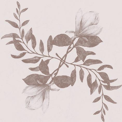 magnolia spin, sepia