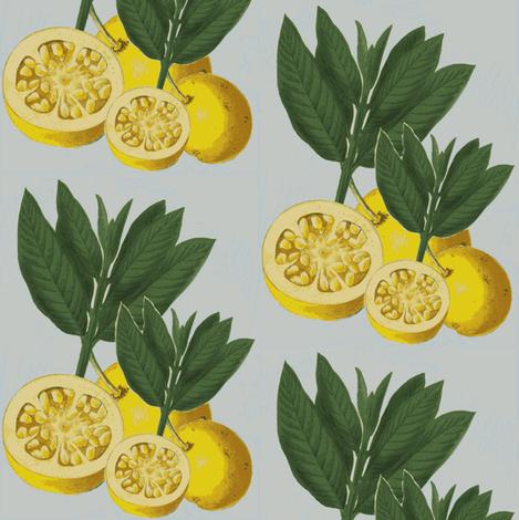 italian lemons, diamond