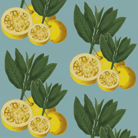 italian lemons, tiffany