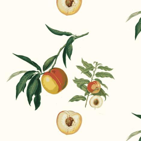 peach trio, multi