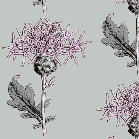 thistle sprig, diamond pink