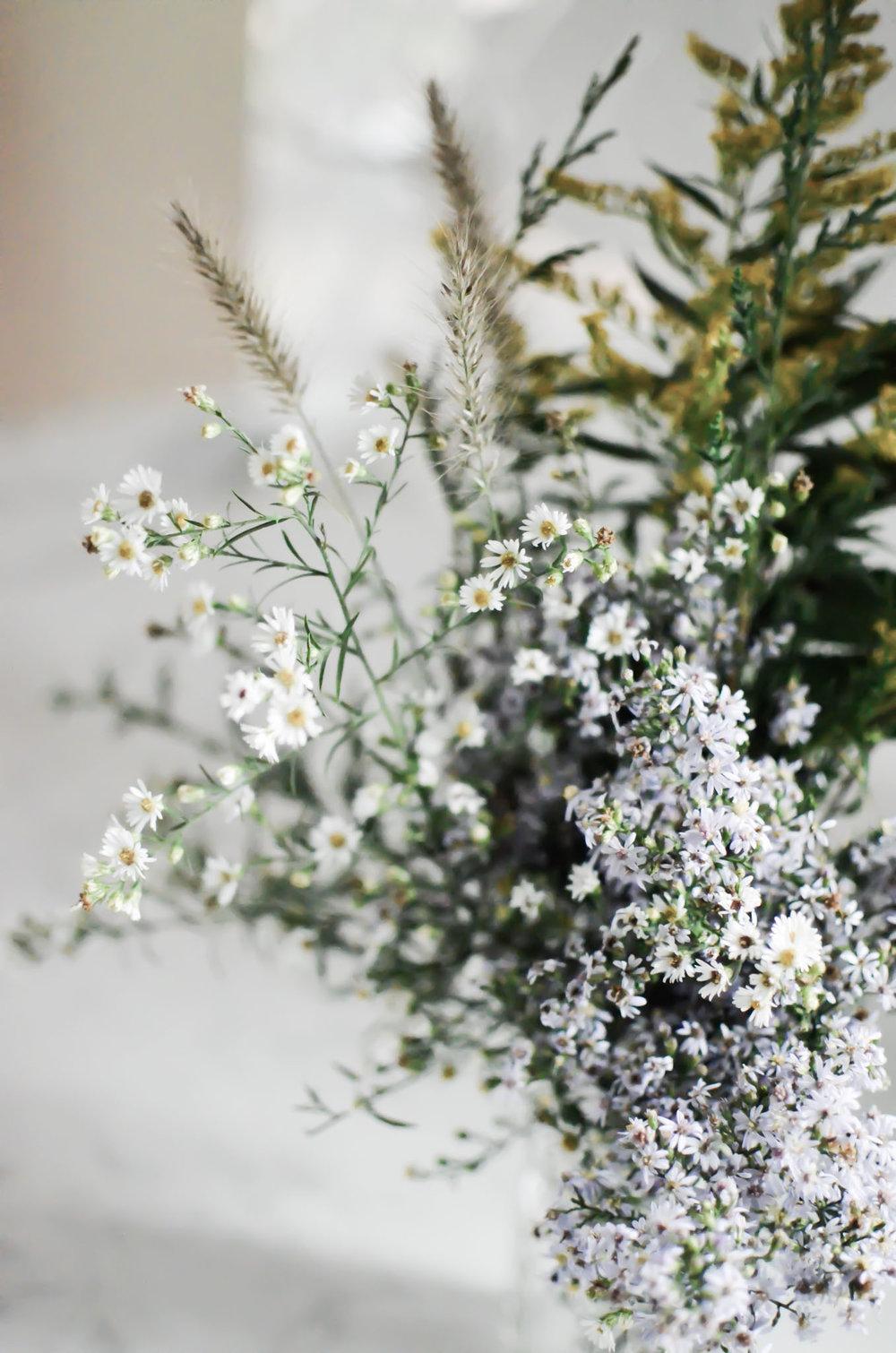 Wendling_Boyd__Wild_Flowers-5.jpg