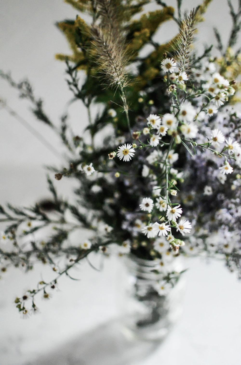 Wendling_Boyd__Wild_Flowers-6.jpg