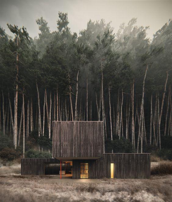 Wendling_Boyd_Interior_Design_Report_Alpine_Modern8.jpg
