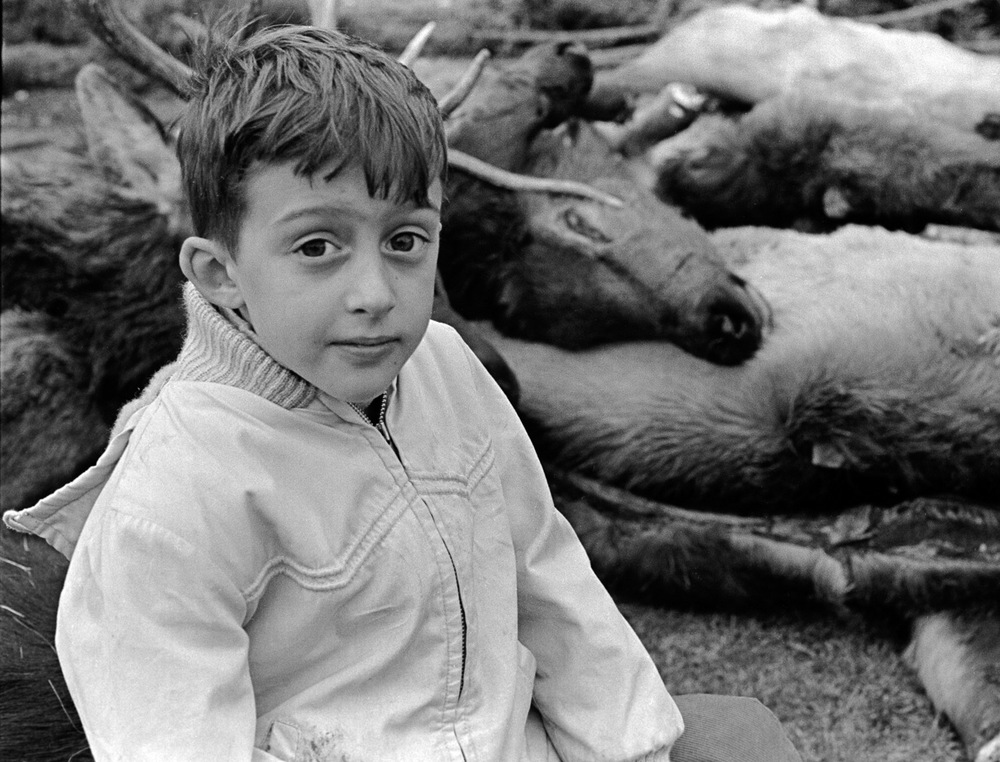 A Boy Sits On The Carcasses Of Elk And Deer In His Front Yard Half