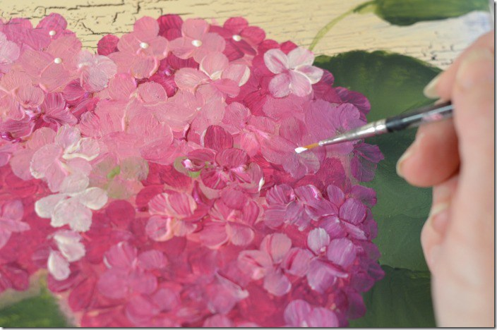 Tuesday, August 22nd       9am-11am          Family Fresh Community Room, Saint Peter, MN     BEAUTIFUL HYDRANGEAS