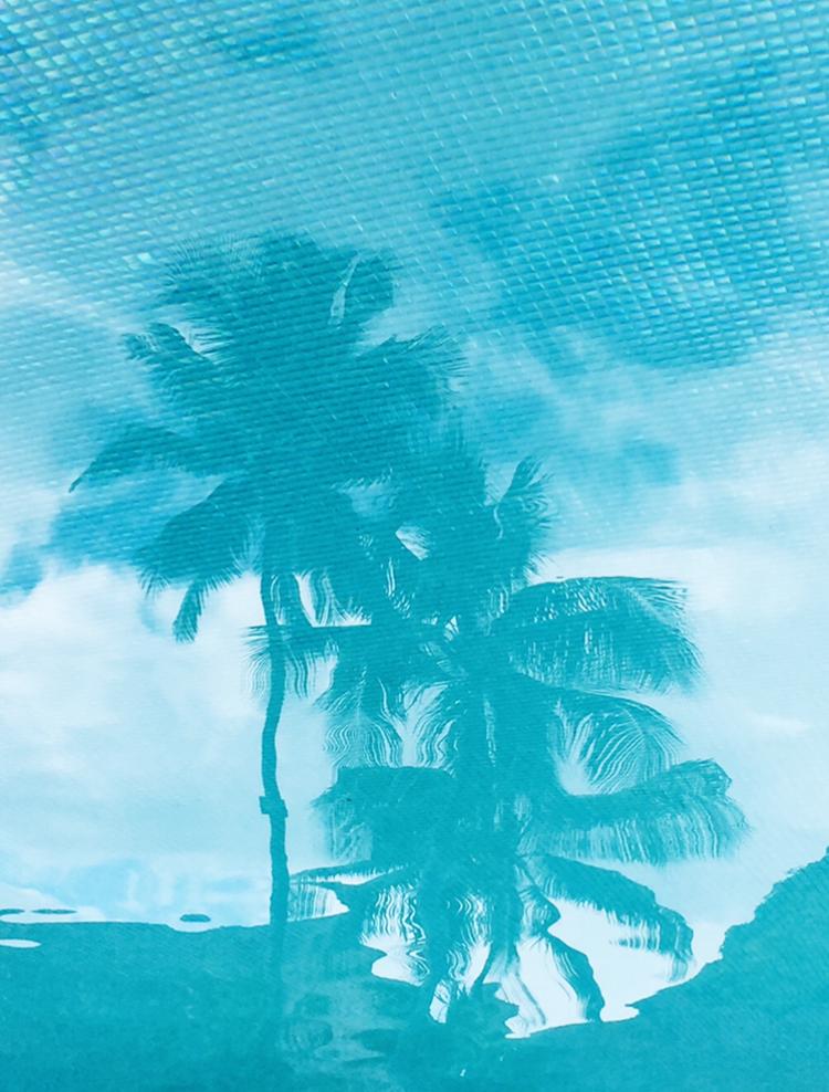 TashaVanZandt_TAQ_Tahiti_IMG_9150.PNG