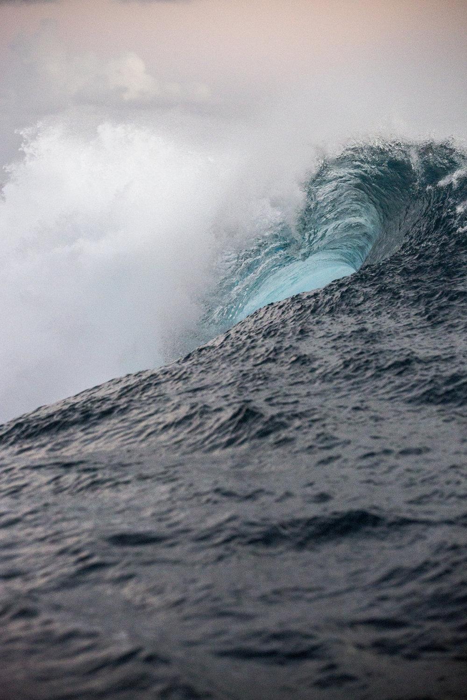 TashaVanZandt_TAQ_Tahiti_BH6A4297.JPG