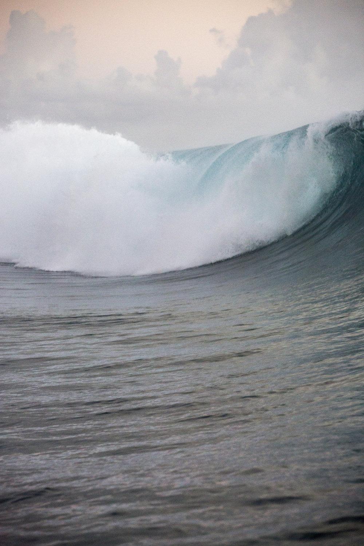 TashaVanZandt_TAQ_Tahiti_BH6A4292.JPG