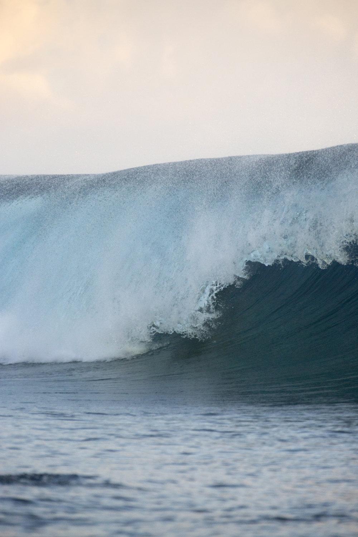 TashaVanZandt_TAQ_Tahiti_BH6A4102.JPG