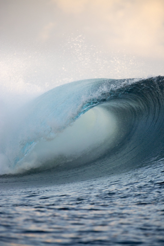 TashaVanZandt_TAQ_Tahiti_BH6A4097_1.JPG