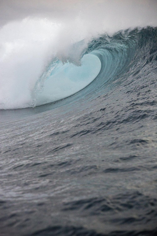 TashaVanZandt_TAQ_Tahiti_BH6A4295.jpg