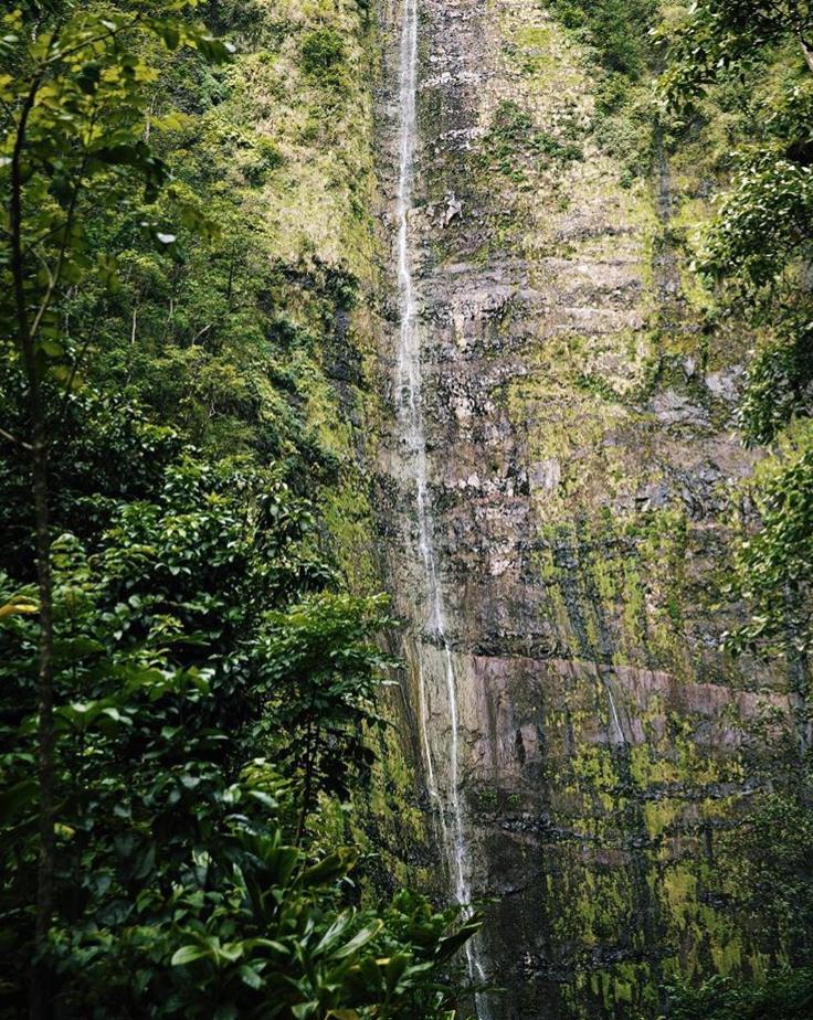 TashaVanZandt_Hawaii_8.PNG
