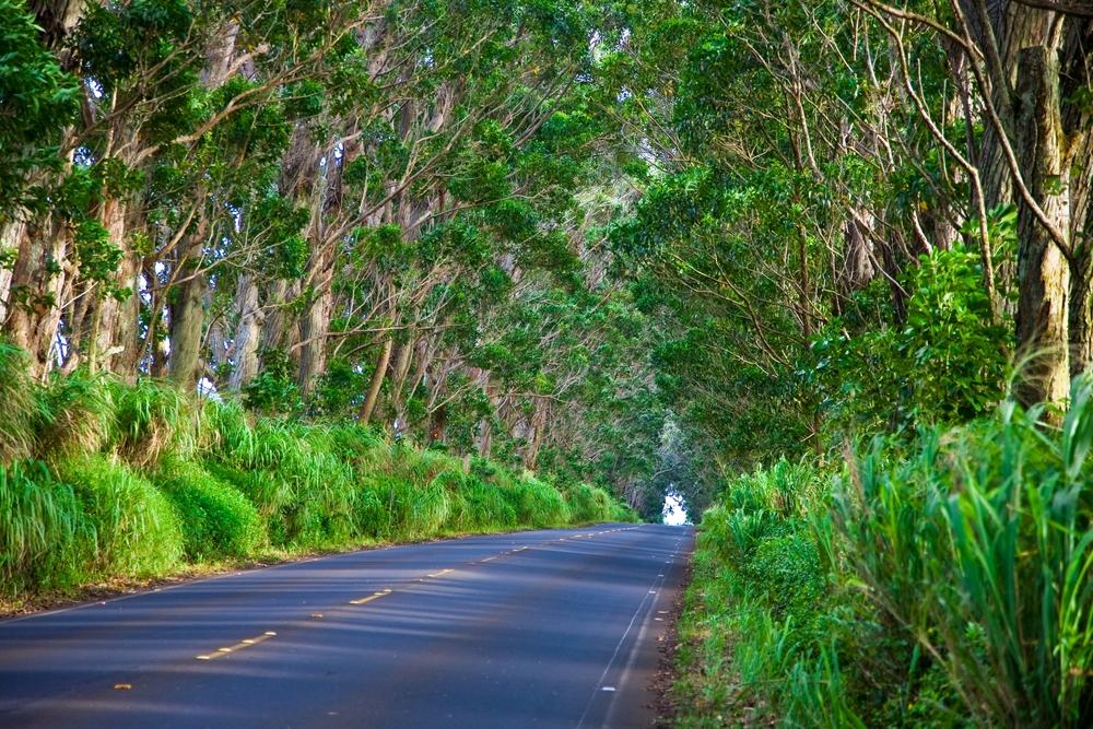 Southside Kauai