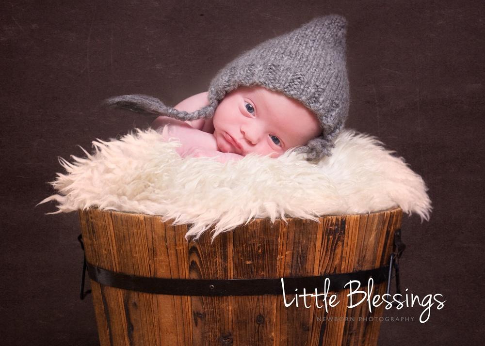 Baby Portfolio 9.jpg