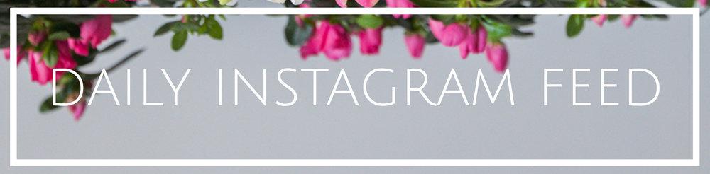 instagram feed Banner.jpg